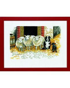 Eva Rosenstand borduurpakket schapen met hond 14-107 borduren