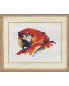Vervaco borduurpakket papegaai om te borduren