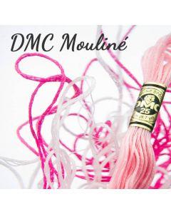 Borduurzijde DMC Mouline Special 117