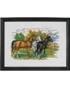 Borduurpakket  3 paarden van Eva Rosenstand 72.474