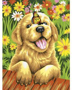 Schilder op nummer pup met vlinder  Dimensions 73-91457