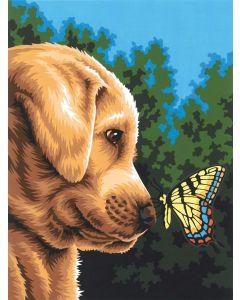 Schilder op nummer hond met vlinder  Dimensions 73-91618