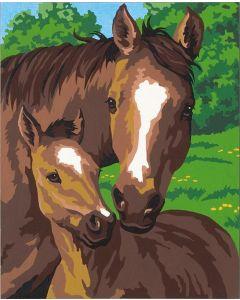 Schilder op nummer paard met veulen Dimensions 91119