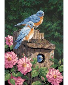 Schilderen op nummer vogelhuis blauwe vogels Dimensions 91401
