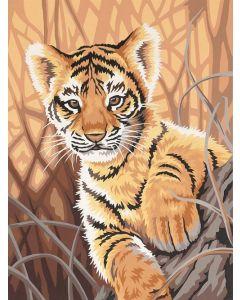 Schilder op nummer tijger Dimensions 91420