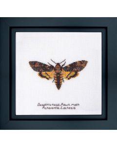 Thea Gouverneur Death's-head Haak moth 563a op linnen borduren