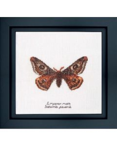 Thea Gouverneur borduurpakket Emperor moth 562a op linnen borduren