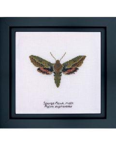 Thea Gouverneur Spurge Hawk moth 565a op linnen borduren