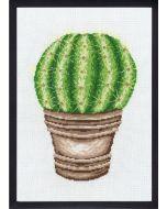 Borduurpakket  Cactus van Permin 92-7444