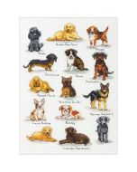 Borduurpakket Dog Sampler van dimensions 70-35353