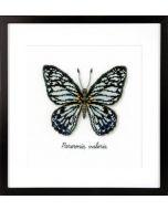 Borduurpakket Blauwe vlinder aida om te borduren pn-0165403