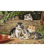 Borduurpakket The Cats - de katten om te borduren van Luca-s b556